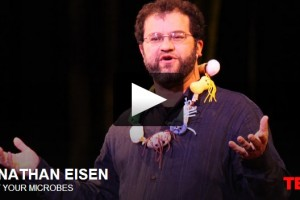 Jonathan Eisen's TED Talk on the Importance of Gut Bacteria