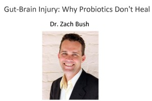 Gut-Brain Injury: Why Probiotics Don't Heal